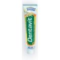 Зубная паста Dentavit целебный бальзам 160гр. Витекс